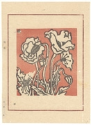 Poppies from the book Nihon no Hana
