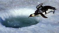 http://animals.nationalgeographic.com/animals/crittercam-virtual-world-antarctica/