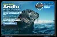 http://animals.nationalgeographic.com/animals/crittercam-virtual-world-arctic/