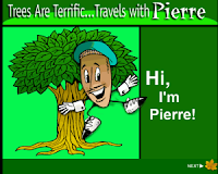 http://urbanext.illinois.edu/trees1/flash/index.html
