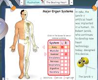 Resultado de imagen de http://www.iknowthat.com/ScienceIllustrations/humanbody/science_desk.swf