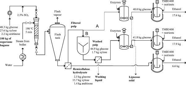 fermentation of sugar cane to ethanol biofuelsacademy. Black Bedroom Furniture Sets. Home Design Ideas