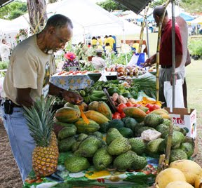 Soursop, UVI-CCAM's featured plant - Center for Complementary and
