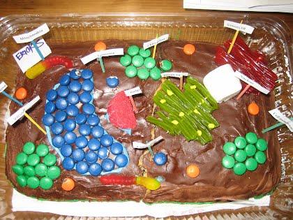 Edible Cake Cells