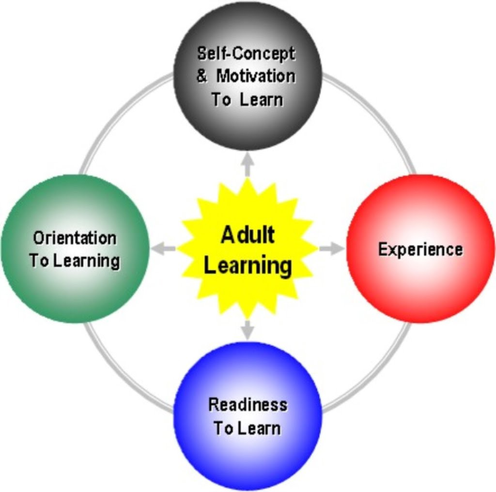 Adult Learning Theory (Andragogy) - Educational Learning Theories