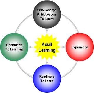 psychology adult learning