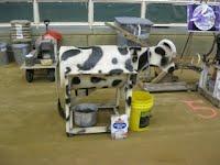 Hands-On Demo - Milk Cow