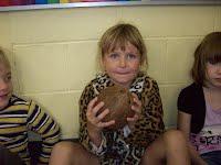 Using our senses to describe a coconut