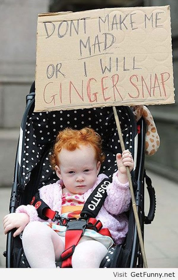 80 Funniest Ginger Jokes Available on the Internet