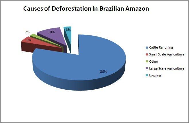 Deforestation and destruction of wildlife - Brazil - an Integrated ...