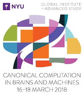 Canonical Computation in Brains and Machines