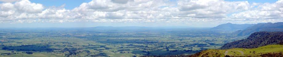 The Kaimai Ranges