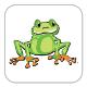 Math frog