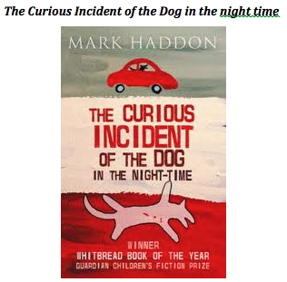 the curious incident of the dog in the nighttime essay questions The curious incident of the dog in the night-time: home rationale unit plan  introduction to the curious incident of the dog in the night-time  questions are .