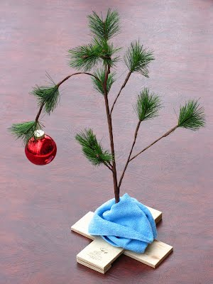 https://www.reginastoops.com/blog/2018/12/19/oh-christmas-tree-oh-christmas-tree-87amm