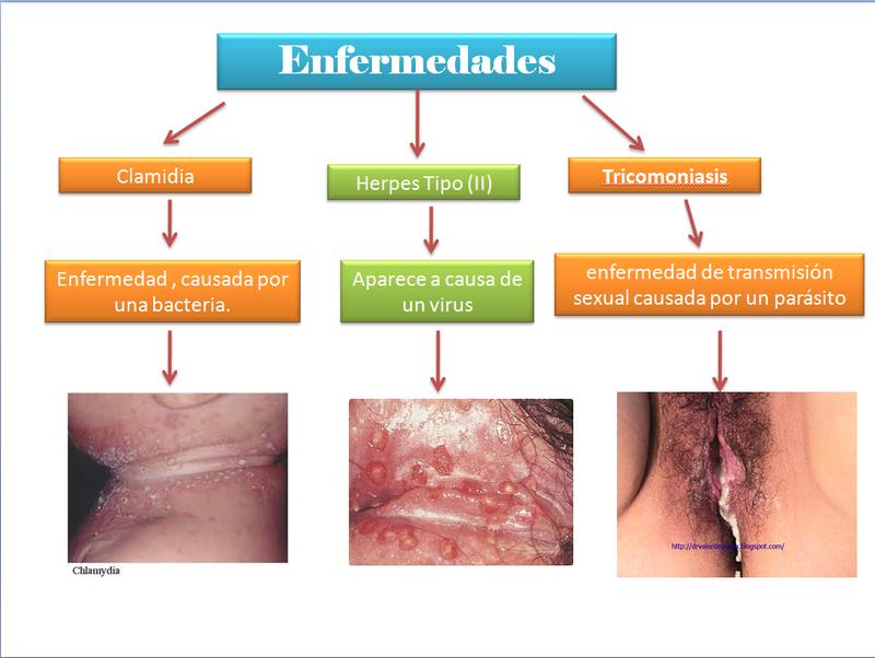 5. Enfermedades del Sistema Reproductor Masculino - Sistema ...