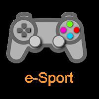 Team Prakticum esport