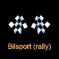 Bilsport (rally)