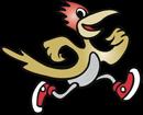 Baca Roadrunner logo graphic