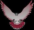 Hawk logo graphic