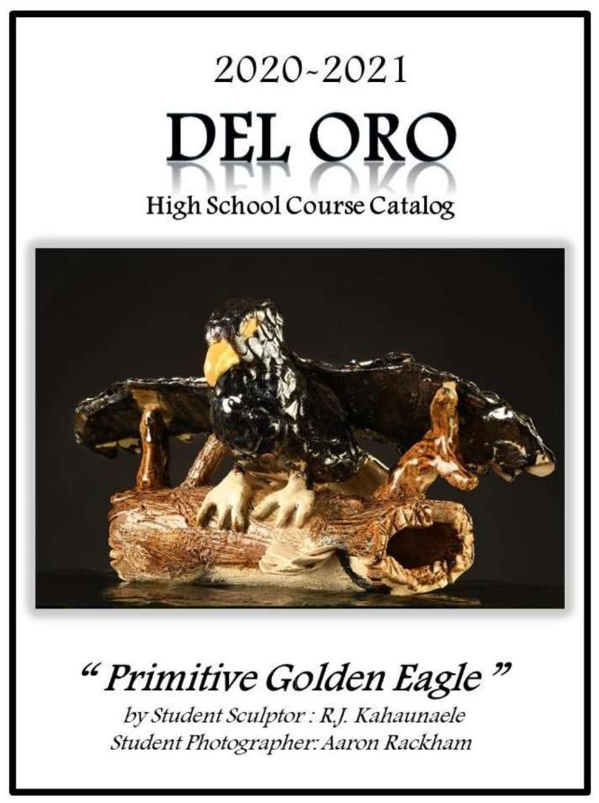 https://issuu.com/delorohigh/docs/course-catalog_2020-2021