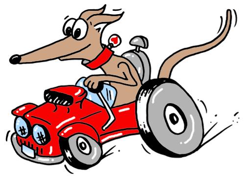 car hound