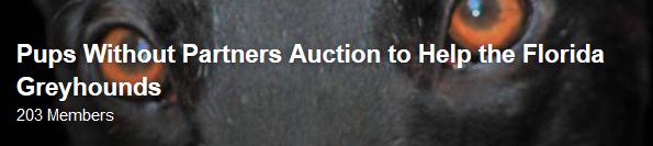 PWP Auction Florida Greyhounds