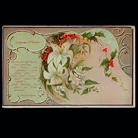 Antique Postcard, Language of Flowers Mrytle & Lilly
