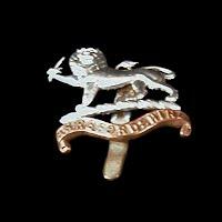 Antique British Cap Badge, Herefordshire, WWI
