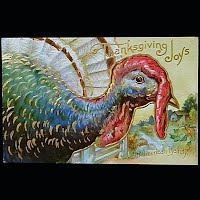 Antique 1911 Embossed Thanksgiving Post Card, Thanksgiving Joy An American Beauty