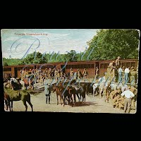 Real Photo Antique Postcard,Mexican Revolution, Troops Disembarking