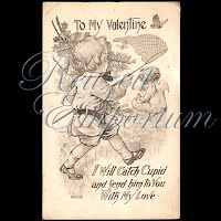Antique Valentine Postcard with butterflies and net