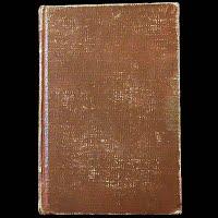 Antique Book 1904, Leopard's Spots, Thomas Dixon