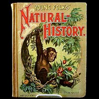 Antique Book, Young Folks Natural History, 1890''s Hurst and Co