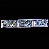 Vintage IAB Taxo Mexico Silver Abalone Tie Clip