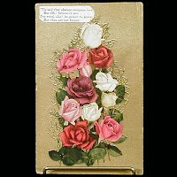 1909 Antique Embossed Postcard, Roses