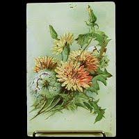 1907 Antique Embossed Postcard, Flower