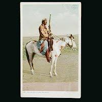 Antique Photo Postcard, Phostint Rattlesnake on Guard