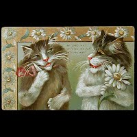 Antique Tuck Postcard, Humorous Cats