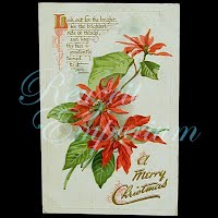 Antique Tuck A Merry Christmas Postcard with poinsettia