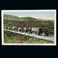 Antique Postcard, Loads of Cherries leaving the Morgan Orchard Traverse City Michigan