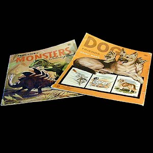 Vintage 1965 Large Size Animal Coloring Books Stephens Publishing