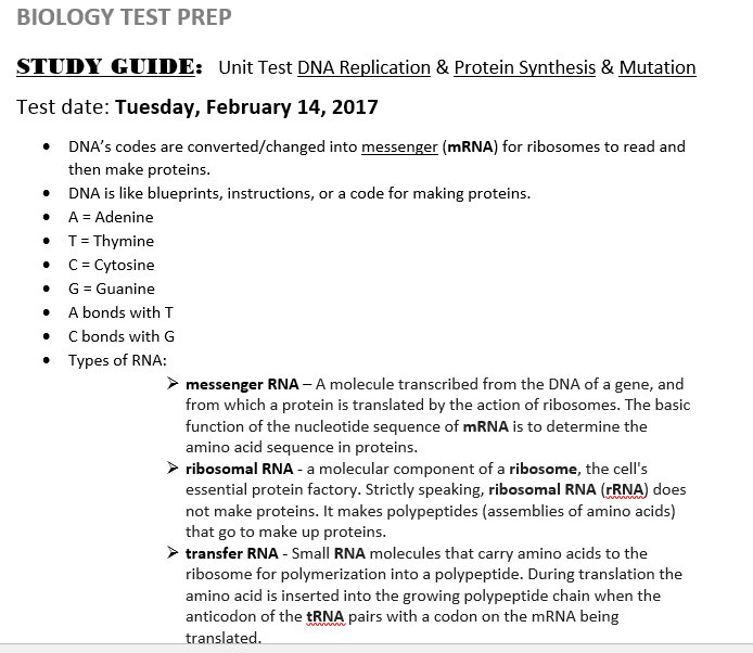 Study Guide: DNA Replication, Protein Synthesis, Mutation ...