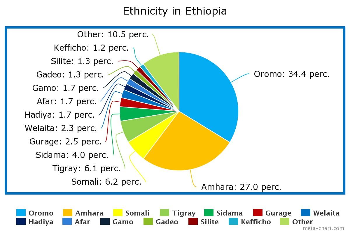 Culture ethiopia the above pie chart represents the amount and differing ethnic peoples within ethiopia the largest amount being oromo which make of 344 of the total nvjuhfo Choice Image