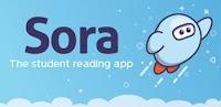 https://soraapp.com/welcome/login/200148