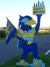 Birthday Hawk Homepage