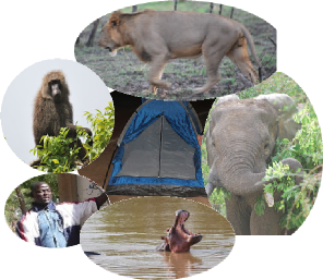 voyage au Bénin,