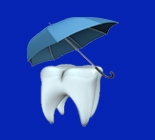 seguros dentales texas florida california