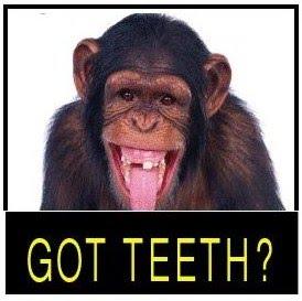 Plan Dental en Florida