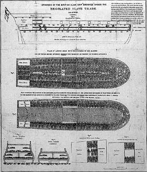 scientific revolution enlightenment essays